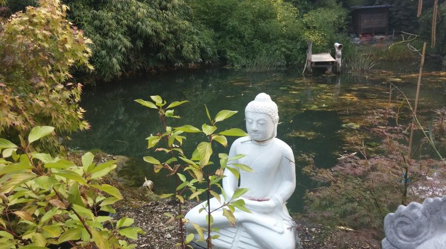 Bilder Rechte: www.dhamma-yoga.de